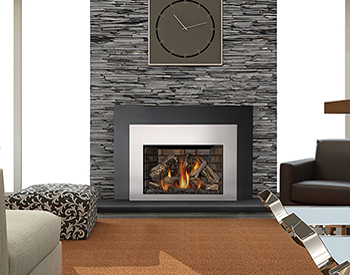 Napoleon xir4 Gas Vented Fireplace Insert