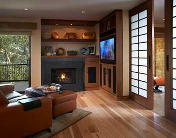 Stoll Fireplace Doors